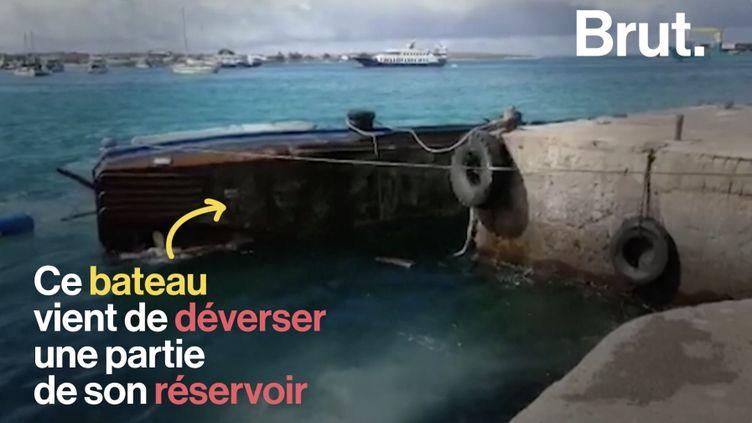 VIDEO. Dans l'archipel des Galápagos, une marée noire évitée de justesse (BRUT)