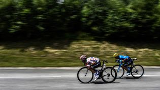 Le Français Julian Alaphilippe, portant le maillot à pois du meilleur grimpeur, et le Costaricain Andrey Amador dans une descentede la 19e étape du Tour de France, le 27 juillet 2018.. (JEFF PACHOUD / AFP)