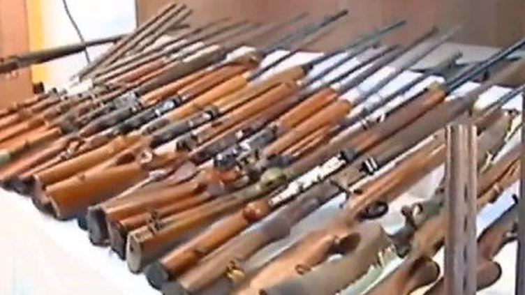 """Capture d'écran du sujet """" Antilles : la chasse aux armes"""" diffusé dans le Soir 3 du 20 avril 2014"""