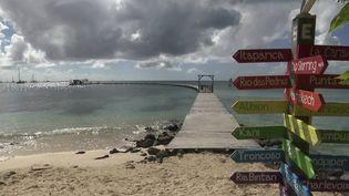 Martinique : le Covid-19 menace la saison touristique (FRANCE 2)