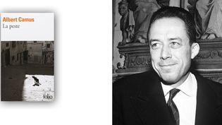 Albert Camus (date inconnue) et la couverture de son roman La peste enéditionFolio. (I.B.L. / Rex Features/REX/SIPA - FOLIO)
