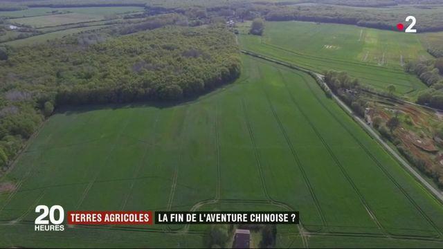 Chine : le groupe Reward, à l'origine du rachat de terres agricoles en France, est en faillite