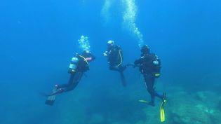 Les touristes ne sont pas encore arrivés en Corse. Les apprentis moniteurs de plongée et les passionnés de kite-surf profitent d'avoir la mer pour eux seuls. (CAPTURE ECRAN FRANCE 2)