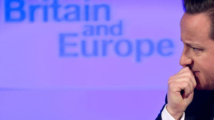 Le Premier ministre britannique, David Cameron, délivre son discours sur l'avenir de l'Europe, le 23 janvier 2013 à Londres. (BEN STANSALL / AFP)