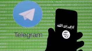 L'application Telegram, une messagerie instantanée très prisée des jihadistes. (? DADO RUVIC / REUTERS / X02714)