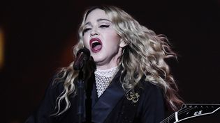 Madonna en avril 2015 à Berlin  (TOBIAS SCHWARZ / AFP)