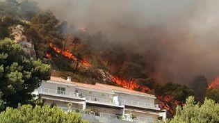 Un incendie a ravagé 300 hectares entre Ensuès-la-Redonne et Carry-le-Rouet, à l'ouest de Marseille (Bouches-du-Rhône), vendredi 15 juillet 2016.  (PDJPARIS / TWITTER)
