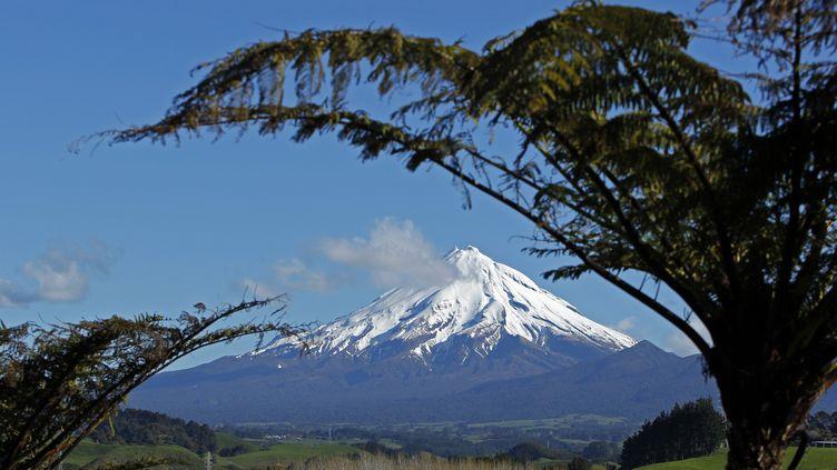 Un programme local a déjà été lancé autour du mont Taranaki pour éradiquer les petits prédateurs mammifères, mais le gouvernement néo-zélandais a dévoilé un programme de grande ampleur, à l'échelle du pays. (BOGDAN CRISTEL / REUTERS)
