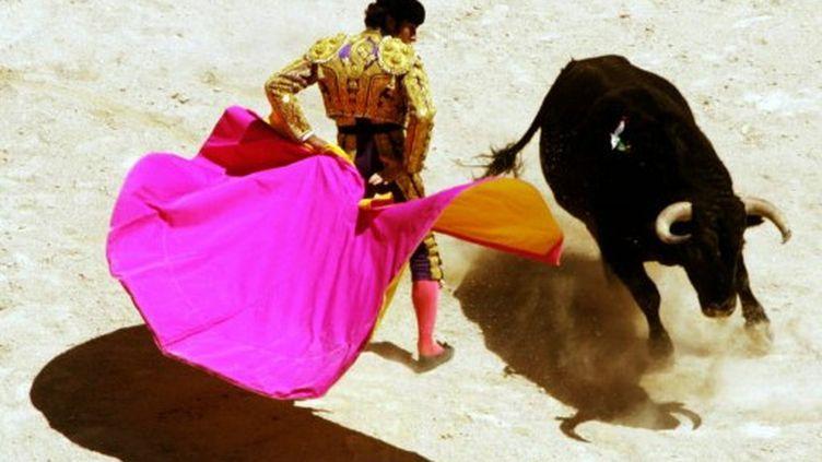 Introduite en France au milieu du XIX siècle, la corrida est pratiquée dans une quarantaine de villes françaises. (AFP - Dominique Faget)