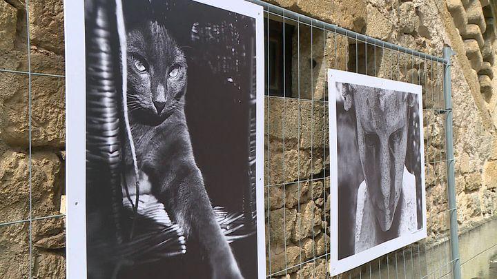 Photos d'Anny Duperey au festival CliClac de Montignac (France 3 Nouvelle Aquitaine)