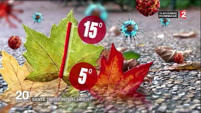 Renforcer ses défenses immunitaires face au froid