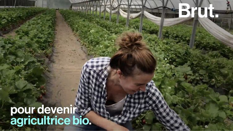 VIDEO. De journaliste à agricultrice, elle raconte son changement de vie (BRUT)