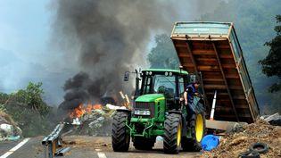 Des agriculteurs brûlent des pneus et de la paille lors du blocage de l'autoroute entre Morlaix et Brest, le 22 juillet 2015. (FRED TANNEAU / AFP)