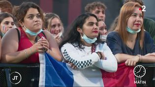 Des supporters des Bleus, lundi 28 juin. (France 2)