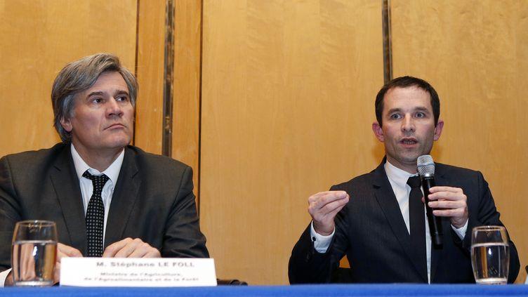 Les ministres Stéphane Le Foll et Benoît Hamon lors d'une conférence de presse à Paris, le 11 février 2013. (PATRICK KOVARIK / AFP)