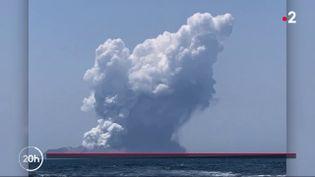 Volcan White Island (FRANCE 2)