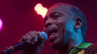 L'artiste nigérian Femi Kuti sur scène à Québec lors du Festival d'été dédié à l musique africaine le 13 juillet 2018.   (Alice Chiche / AFP)