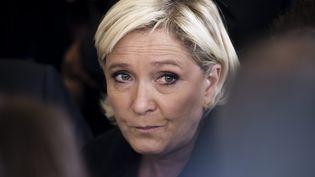 Marine Le Pen lors d'un meeting derentrée politique du FN, à Brachay (MAXPPP)