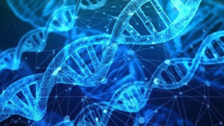 Les progrès de la génétique
