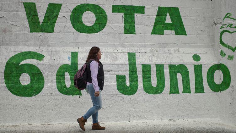 """Les Mexicains appelés aux urnes le 6 juin 2021 pour""""plus grand scrutin de l'Histoire du pays"""". (PEDRO PARDO / AFP)"""