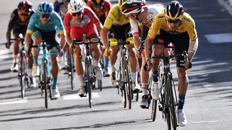 Quatrième étape du Tour de France 2020. (ANNE-CHRISTINE POUJOULAT / POOL / AFP POOL)