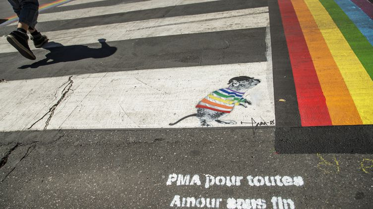 Message inscrit dans la rue, dans le quartier du Marais, à Paris (illustration). (CHRISTOPHE PETIT TESSON / EPA)