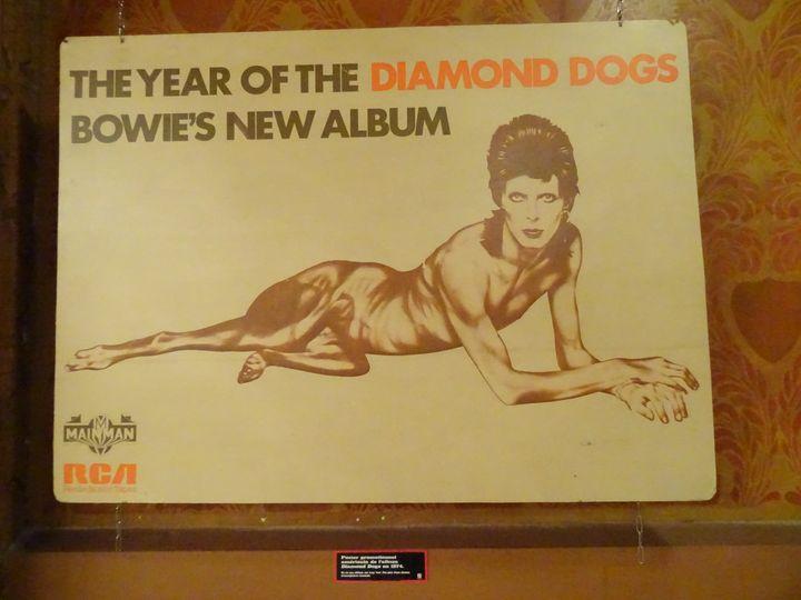 """Un panneau publicitaire anglais pour l'album """"Diamond Dogs"""" (1974) de David Bowie, et son fameux visuel mi-homme mi-chien, à l'exposition """"Bowie Odyssée"""" au Palace. (COLLECTION JEAN-CHARLES GAUTIER / PHOTO LAURE NARLIAN FRANCEINFO)"""
