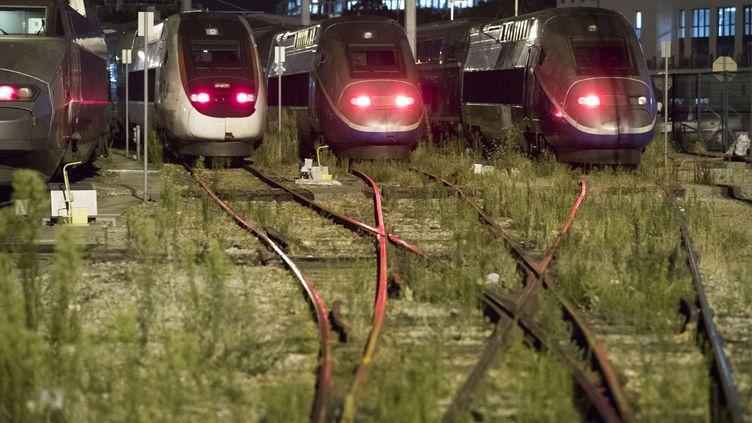 Des trains à l'arrêt, à Chatillon (Hauts-de-Seine), le 31 juillet 2018. (GEOFFROY VAN DER HASSELT / AFP)