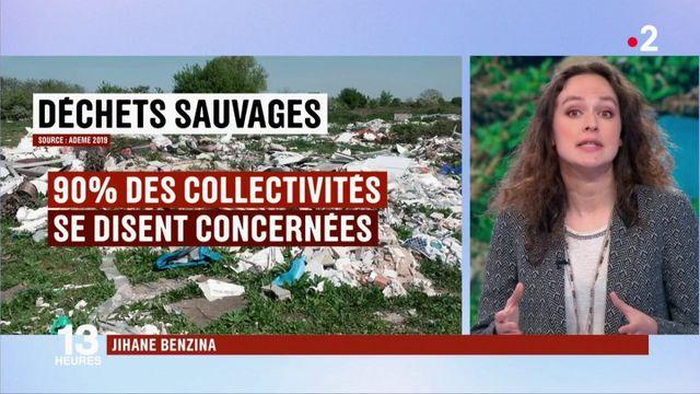 Environnement : les collectivités s'organisent face au dépôt d'ordures sauvages
