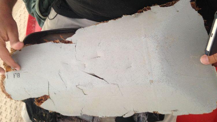 """Le deuxième débris retrouvé lundi 6 juin par l'homme d'affaires américainBlaine Alan Gibson à Madagascar, en compagnie des équipes de """"Complément d'enquête"""". (COMPLEMENT D'ENQUETE / FRANCETV INFO)"""