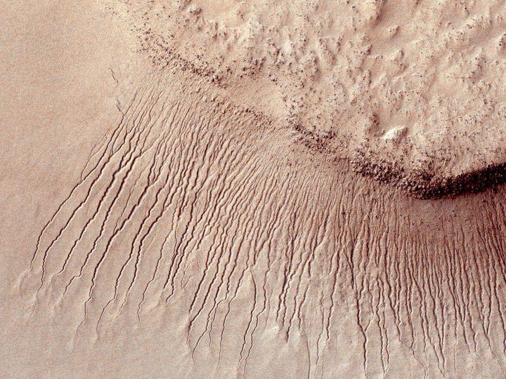 Des canaux strient le sol de la planète Mars, sur un cliché pris par la sondeMars Reconnaissance Orbiter le 14 janvier 2011. (NASA / REUTERS)