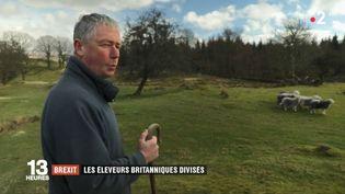 Un éleveur britannique s'inquiète de l'approche du Brexit. (FRANCE 2)