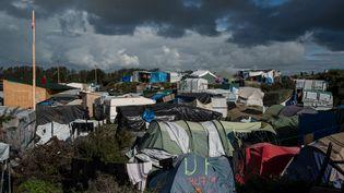 Vue du camp de migrants de Calais, le 22 octobre 2016. (GUILLAUME PINON / NURPHOTO /AFP)