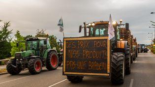 Manifestation des agriculteurs à Srtasbourg le 26 juillet 2015. (CITIZENSIDE/CLAUDE  TRUONG-NGOC / CITIZENSIDE.COM)