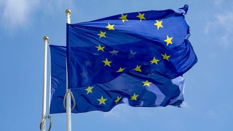 Le drapeau de l'Europe devant le Parlement européen de Starsbourg, le 10 octobre 2015. (DANIEL KALKER / DPA / AFP)