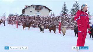Hautes-Alpes : une station de ski remplace les remontées mécaniques par des chevaux (France 3)