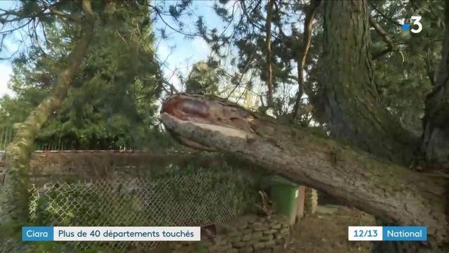 Tempête Ciara : les habitants découvrent les dégâts dans le nord et l'est de la France