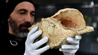 Guillaume Fleury, du Muséum de Toulouse, montre uneconque de 18 000 ans trouvée en 1931dans la grotte de Marsoulas (Haute-Garonne). (GEORGES GOBET / AFP)