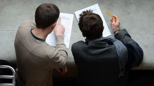 Des étudiantsdans les locaux de l'Ecole nationale d'administration, à Strasbourg, en 2013. (PATRICK HERTZOG / AFP)