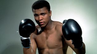 Le boxeur Mohamed Ali pose à l'occasion d'un portrait, non daté.  (ACTION IMAGES / REUTERS)