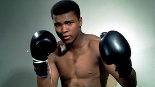 Le boxeurMohamed Ali pose à l'occasion d'un portrait, non daté. (ACTION IMAGES / REUTERS)