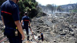 Les pompiers tentent d'éteindre un feu dans le sud de la France à Saint-Gilles (Gard) le 29 juin 2019. (SYLVAIN THOMAS / AFP)