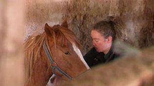 À la campagne, surtout dans les régions d'élevage, les besoins de soins vétérinaires sont immenses. Les jeunes vétérinaires préfèrent le plus souvent s'établir en ville, où le métier est moins physique. (FRANCE 2)