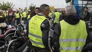 Des gilets jaunes à Narbonne (Aude), le 9 novembre 2018. (IDRISS BIGOU-GILLES / HANS LUCAS / AFP)