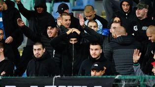 Des supporters bulgaresfont des saluts nazis lors du match Angleterre-Bulgarie de qualification pour l'Euro-2020, le 14 octobre 2019, à Sofia. (NIKOLAY DOYCHINOV / AFP)