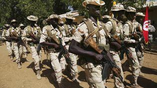 Des soldats tchadiens participent à une parade, le 16 février 2015, à N'Djamena (Tchad). (REUTERS)