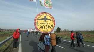 Des manifestants protestent contre le projet d'aéroport de Notre-Dame-des-Landes, le 27 février 2016, en Loire-Atlantique. (MAXPPP)