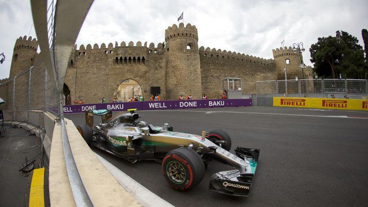 Nico Rosberg a profité de l'erreur de Lewis Hamilton pour arracher la pole (FREDERIC LE FLOC H / DPPI MEDIA)