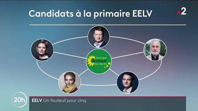 Politique : les candidats à la primaire écologiste réunis durant l'université d'été