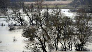 Des champs inondés entre Magnières et Vallois (Meurthe-et-Moselle), le 5 janvier 2018. (ALEXANDRE MARCHI / MAXPPP)